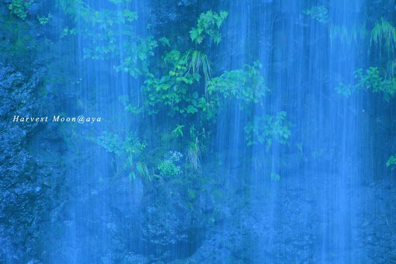 水のカーテン_b0208495_22915.jpg