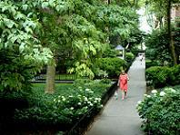 ソーイージー・ニューヨークってどんなところ?_b0130809_1375493.jpg