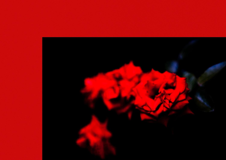 赤レンガ公開ポートフォリオオーディション グランプリ•準グランプリ•優秀賞作品_b0187229_02547.jpg