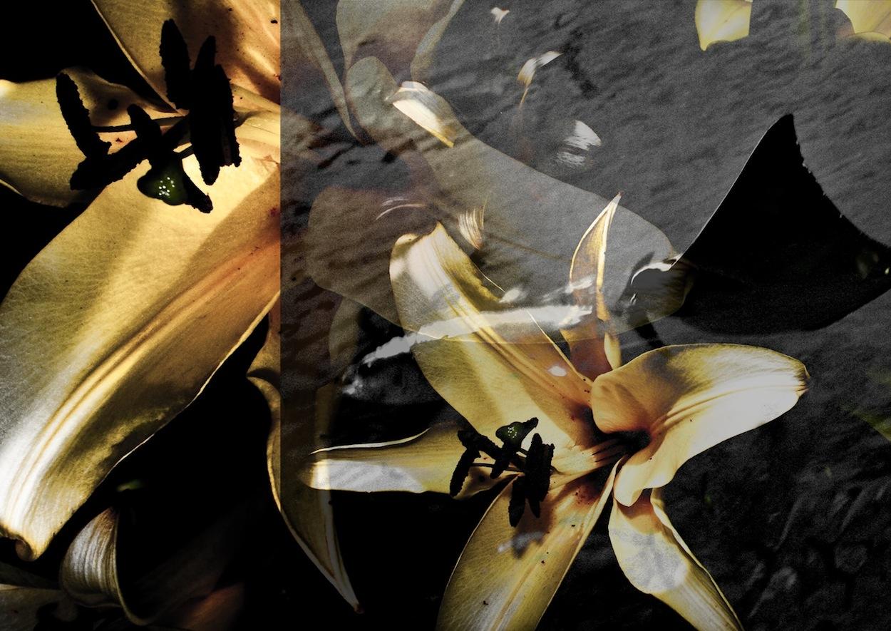 赤レンガ公開ポートフォリオオーディション グランプリ•準グランプリ•優秀賞作品_b0187229_03624.jpg