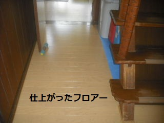 震災復旧工事3.5日目_f0031037_21593516.jpg