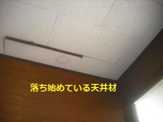震災復旧工事3.5日目_f0031037_21594166.jpg
