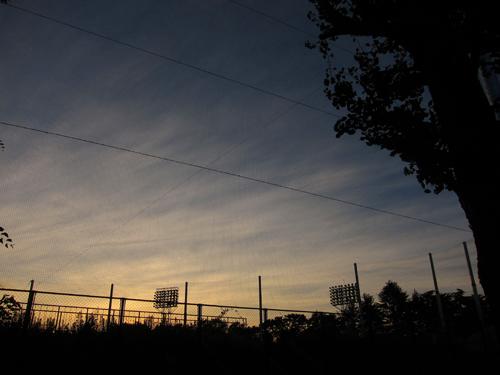 f0166645_20112061.jpg