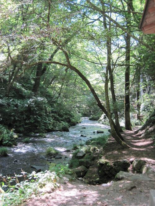 ANCIENT HOTEL ~ 竜返しの滝で涼む♪_f0236260_019416.jpg