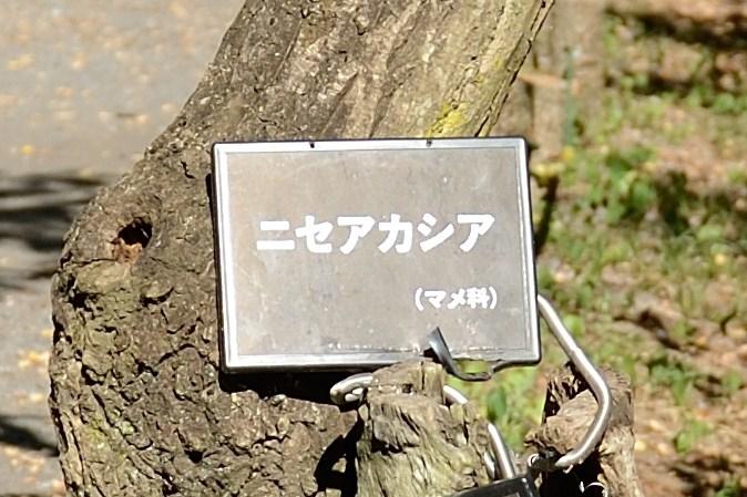 f0222161_201224.jpg