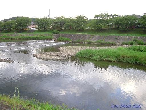 賀茂川 2012年8月終わり_a0164068_2229144.jpg