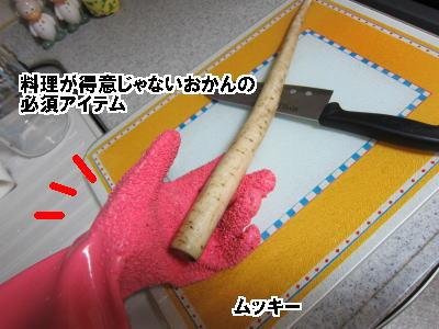 d0020869_13371541.jpg