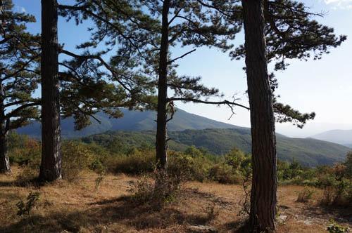 山の恵みと秋の気配_f0106597_18115313.jpg