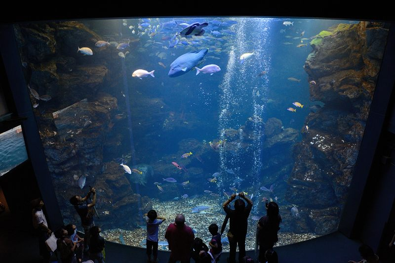 京都水族館 其の二_f0032011_1943514.jpg
