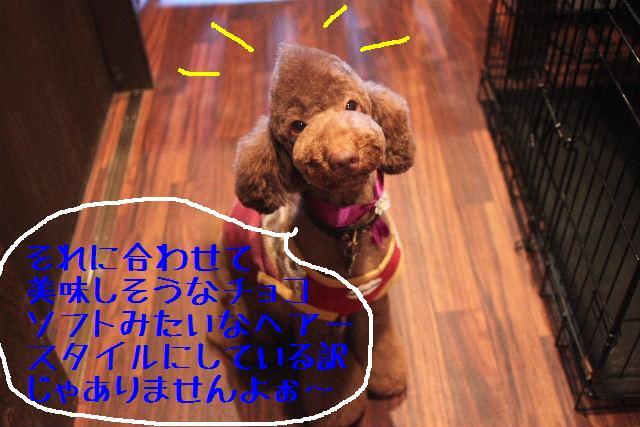 b0130018_22201420.jpg