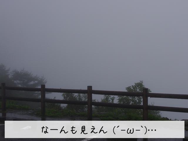 f0008935_0415966.jpg