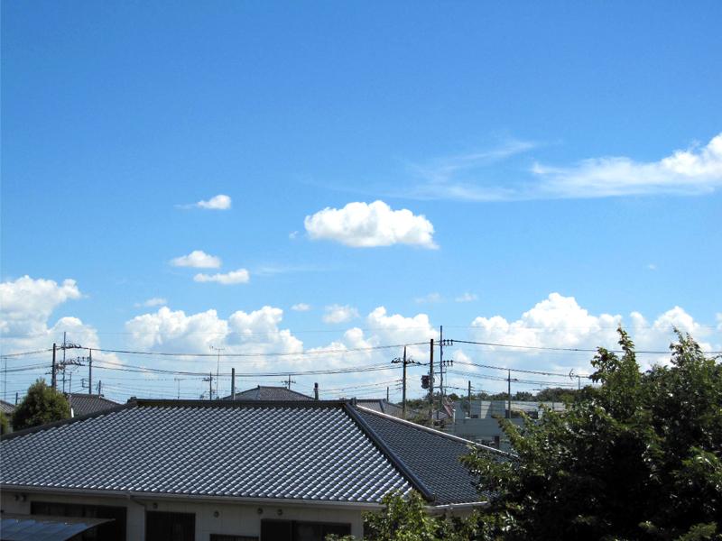 暑いよ〜〜(´д`ι)_f0119369_15394367.jpg