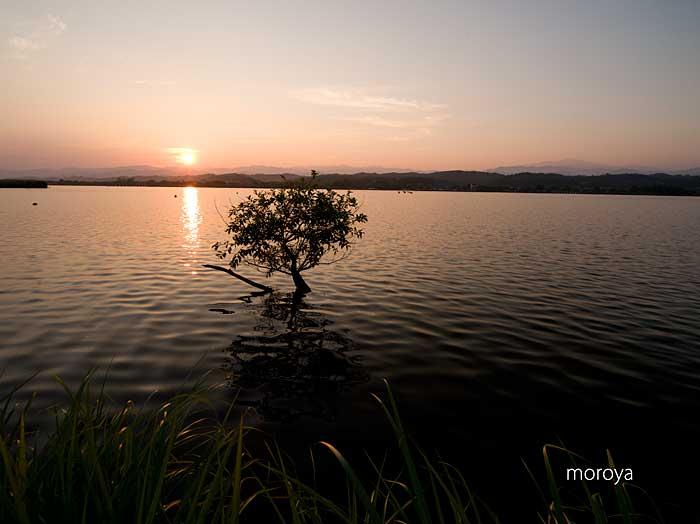 湖畔朝景_c0085877_7115595.jpg