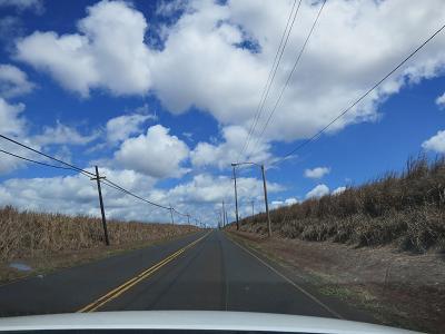 HAWAII 2_f0202682_18124665.jpg