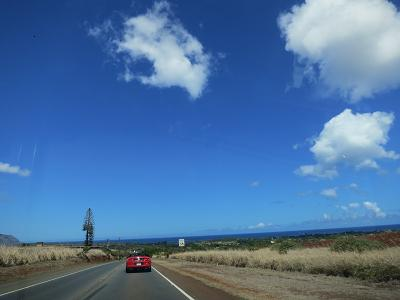 HAWAII 2_f0202682_18125742.jpg