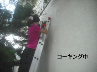 震災復旧工事5.5日目_f0031037_21381657.jpg