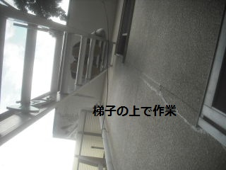震災復旧工事5.5日目_f0031037_21383010.jpg