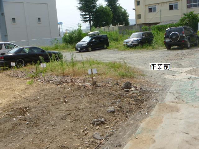 駐車場草刈り_c0186441_22121254.jpg