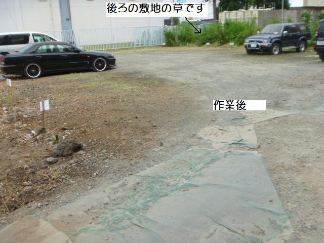 駐車場草刈り_c0186441_2213403.jpg