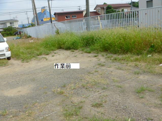 駐車場草刈り_c0186441_22153261.jpg