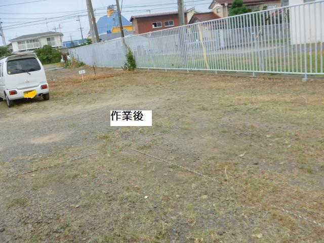 駐車場草刈り_c0186441_22174250.jpg