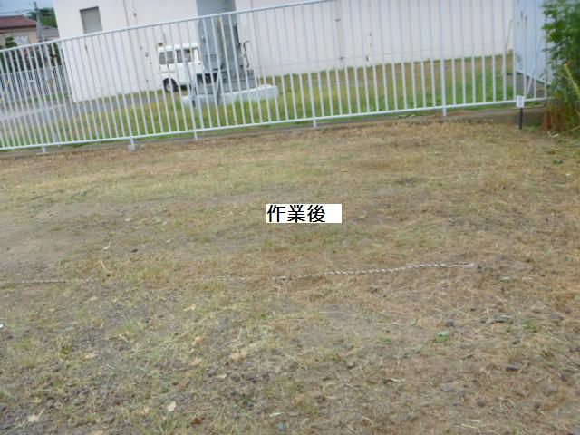 駐車場草刈り_c0186441_22194812.jpg
