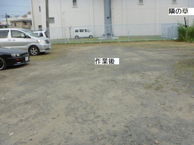 駐車場草刈り_c0186441_22262985.jpg