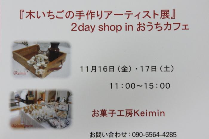 11月16日・17日『木いちごの手作りアーティスト展』2day shop inおうちカフェ開催します。_c0169360_1650871.jpg