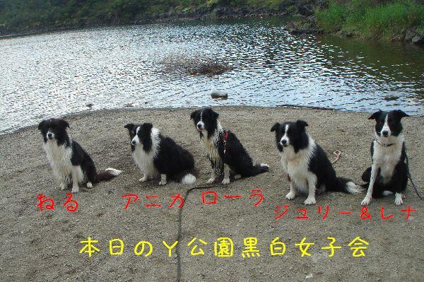 b0101991_21564681.jpg