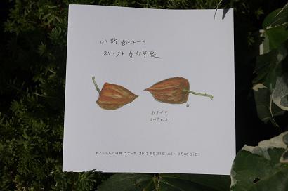 「小野セツローのスケッチと手仕事展」はじまります_f0226293_14483078.jpg