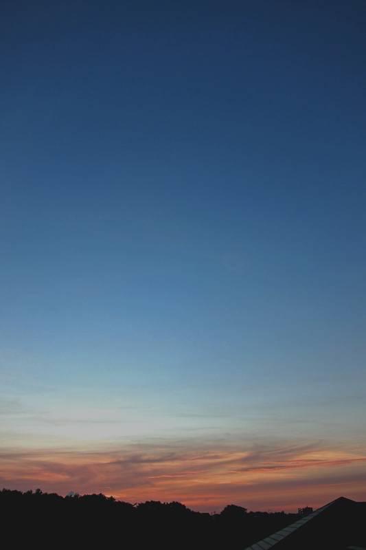 コシアカツバメの一番子達/朝焼け中の明けの明星_b0024798_13434597.jpg
