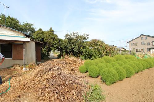 神奈川県 寒川の家:敷地_e0054299_1164362.jpg