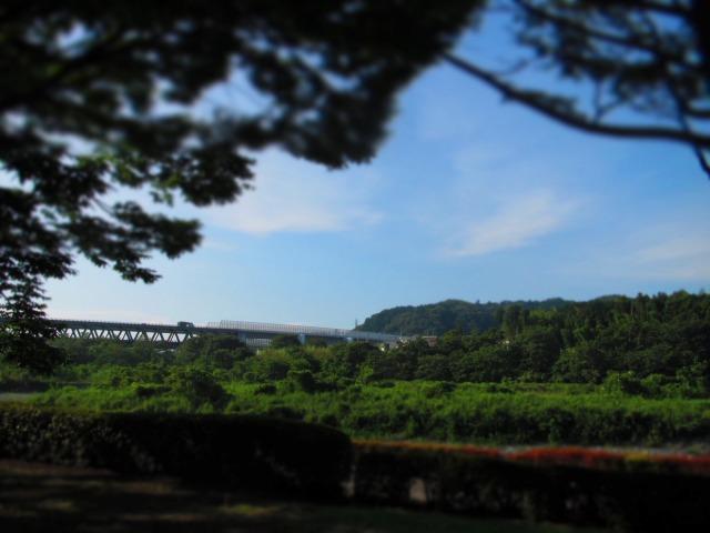 森のカフェ アースガーデンへ行きました。_f0039907_1156132.jpg