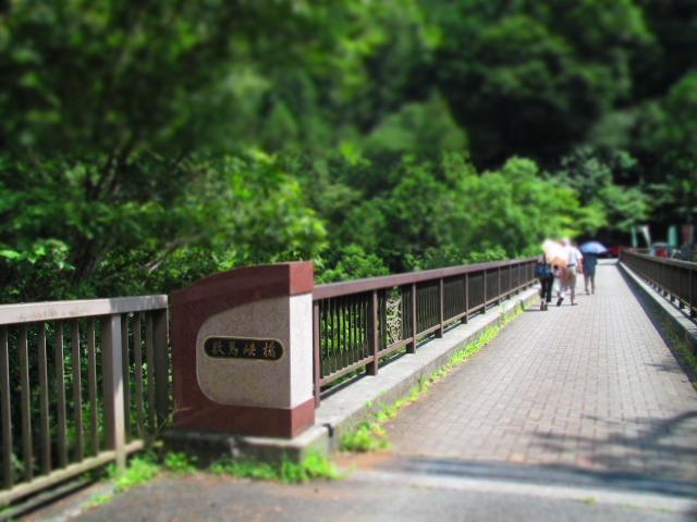 森のカフェ アースガーデンへ行きました。_f0039907_11583964.jpg