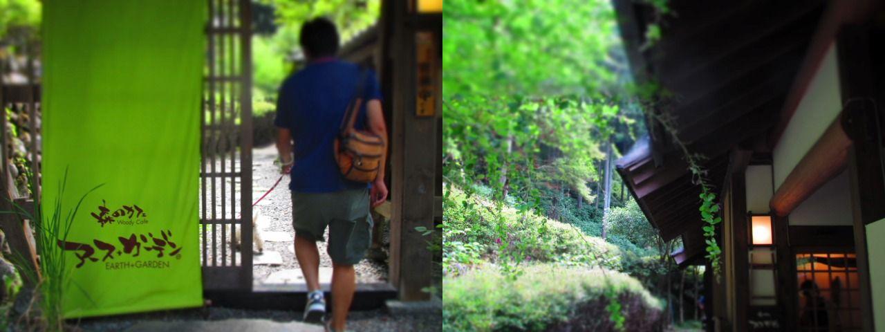森のカフェ アースガーデンへ行きました。_f0039907_1223346.jpg