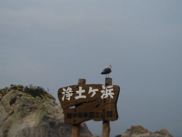 浄土ヶ浜へ行きました(o^∇^o)ノ_f0039907_14382541.jpg
