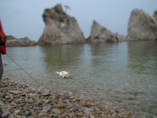 浄土ヶ浜へ行きました(o^∇^o)ノ_f0039907_14443561.jpg