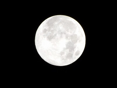 VOL,2072 『今夜は、満月-ブルームーン』_e0040714_23323395.jpg