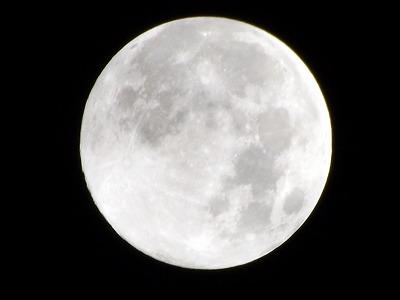 VOL,2072 『今夜は、満月-ブルームーン』_e0040714_23334982.jpg