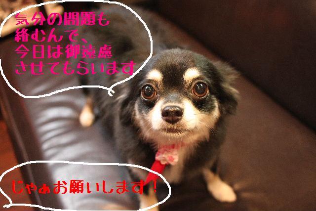 おはよぉ~ございます!!_b0130018_733064.jpg