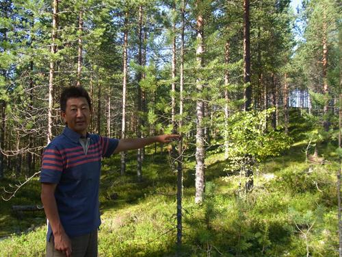 フィンランドの森_e0123419_2313259.jpg