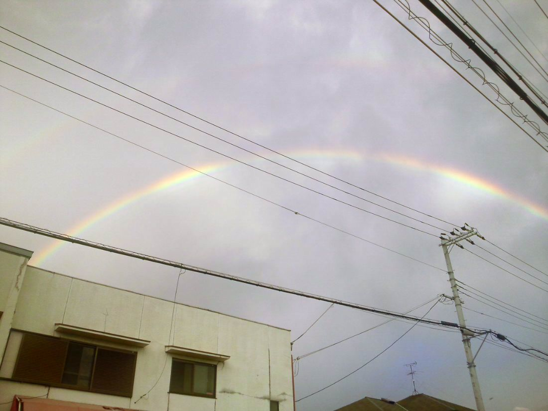 8月最後の日も虹の巻_a0197623_19505981.jpg