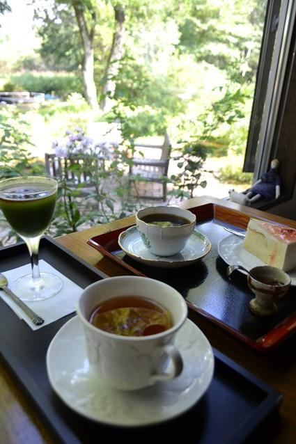 北軽井沢 海のマリー 8月の山野草 2012_e0228938_21141915.jpg