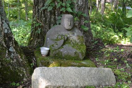 北軽井沢 海のマリー 8月の山野草 2012_e0228938_21161793.jpg