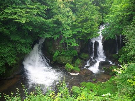 夏の東路の旅(5)竜頭の滝・戦場ヶ原_c0057946_1929152.jpg