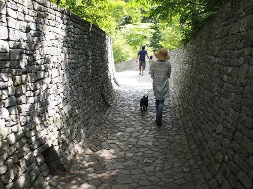 軽井沢の夏・その1_e0243765_2282133.jpg