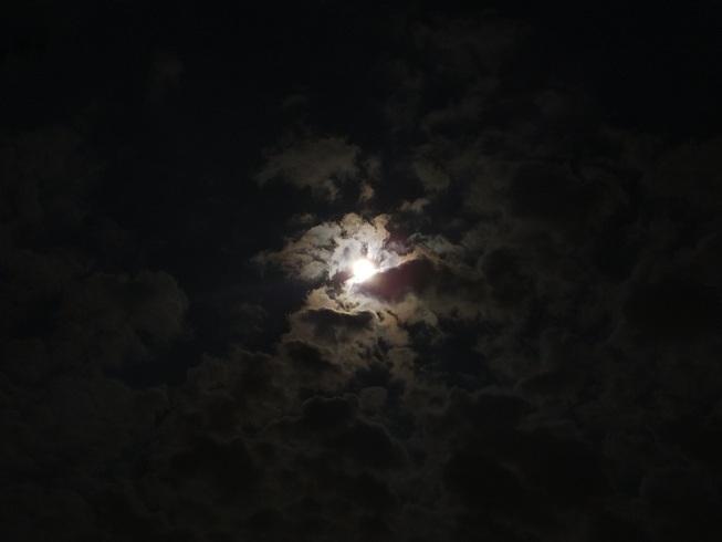 お月さん_a0196870_2325374.jpg