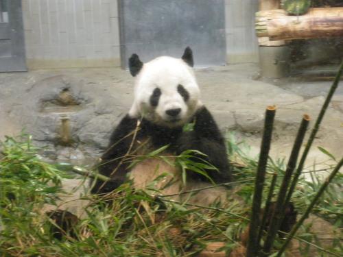 動物園~♪_c0231772_11414657.jpg