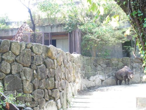 動物園~♪_c0231772_1144233.jpg