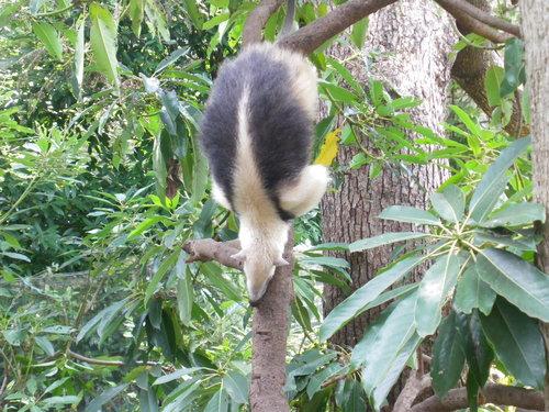 動物園~♪_c0231772_123654.jpg